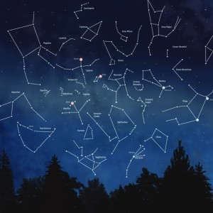 Make Your Own Constellation Malden Public Library